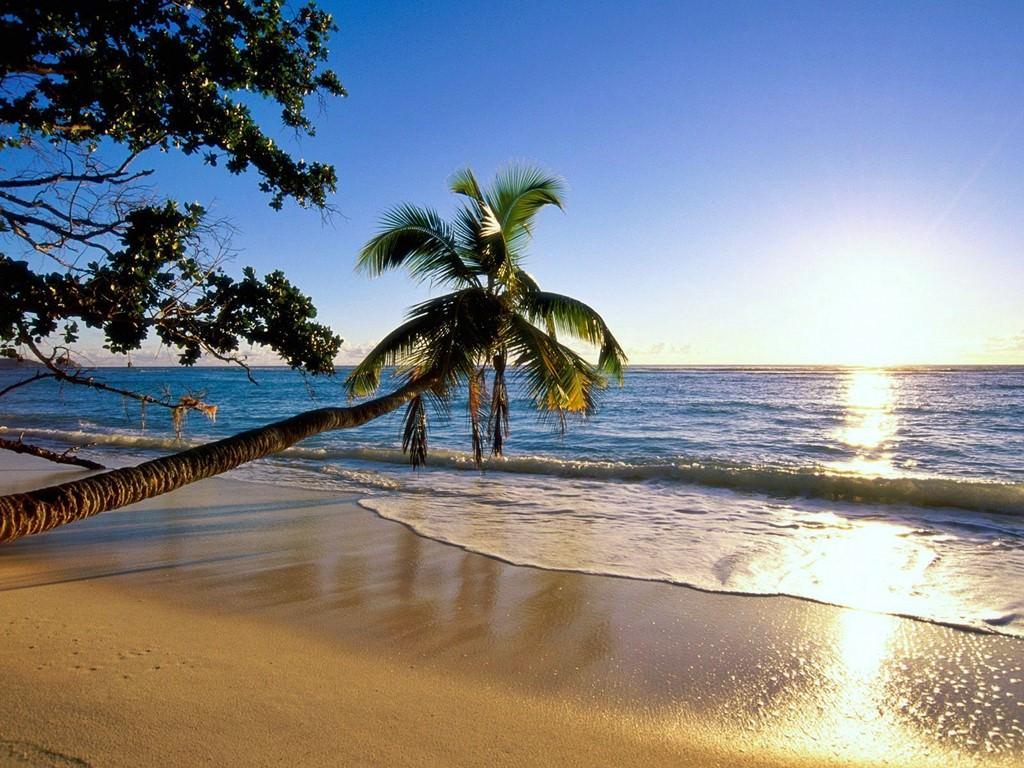 Convenient Ways to Travel through Seychelles   Transport, Airports
