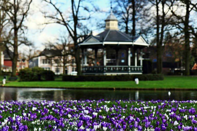 Crocuses, snowdrops & bandstand- Oranjepark, Apeldoorn