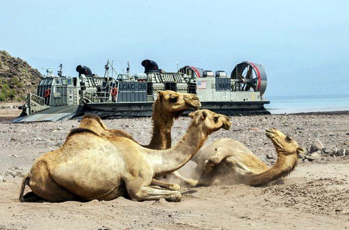26th MEU Djibouti LCAC Landings [Image 2 of 15]