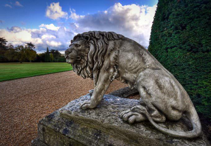 Hoo Lion