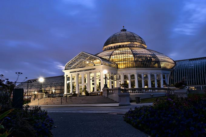 Night Time at the Conservatory