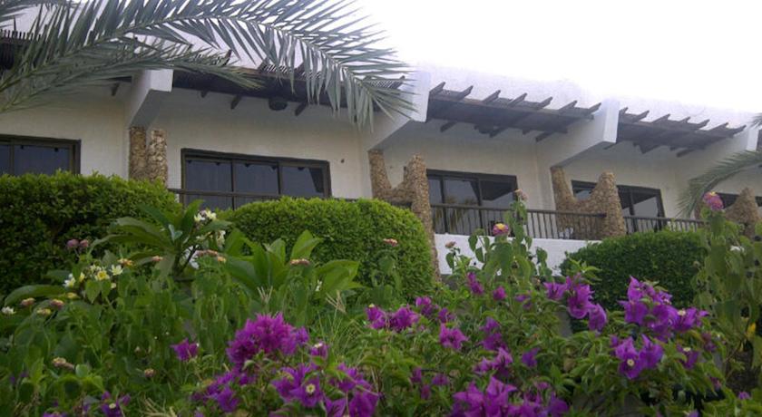 Фотография отеля Turquoise Beach Hotel